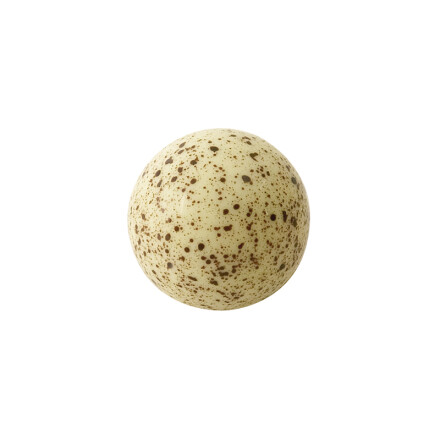 ball small white, brown spots 2,2cm